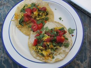 Huh oh! What's this? An egg taco is what it is. Scramble the eggs, add fresh picked vegetables and serve on a taco. VERY IMPORTANT. Fry the taco in butter before topping. You'll thank yourself for the additional flavor and guilty pleasure ;)